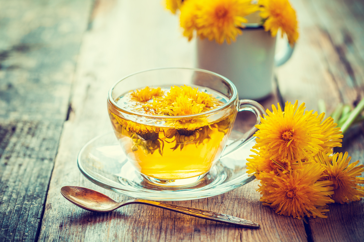 The Benefits of Dandelion - Bella Nani Day Spa, Salon and Spa, Ballston Spa, NY